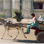Transportation 4