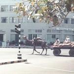 1974 Street in Karachi