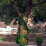 hindugraveyard_25